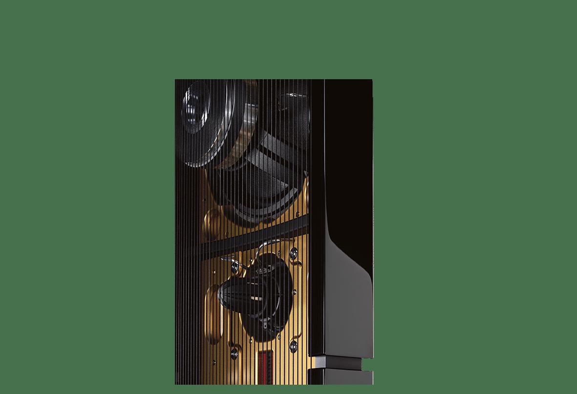 Model D speaker back with strings close up