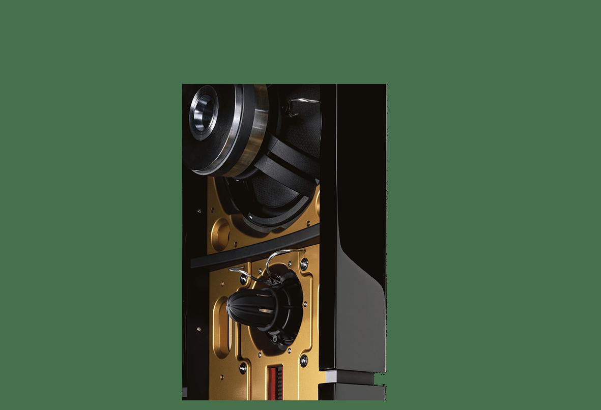 Model D speaker back close up without strings